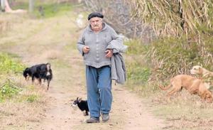 Uruguayský prezident José Mujica v pracovním. Foto: Porimpatria.org