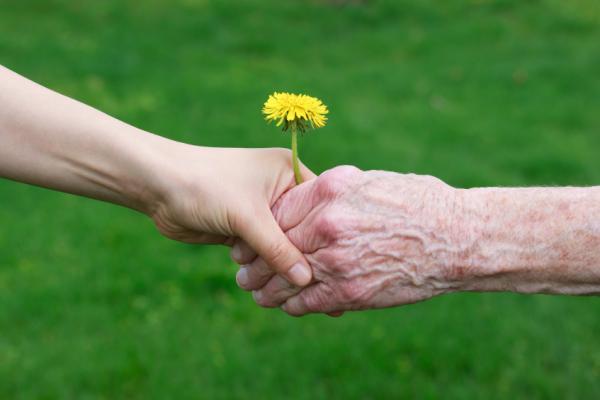 Pouze v Jihomoravském a Ústeckém kraji si lidé častěji než na důchody stěžovali na přiznávání a vyplácení dávek pomoci v hmotné nouzi.