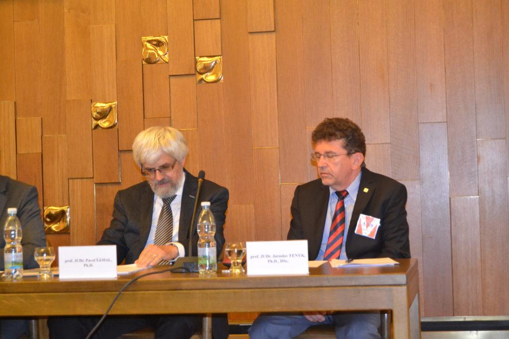 Předseda Nejvyššího soudu s místopředsedou Ústavního soudu Jaroslavem Fenykem Foto: EP